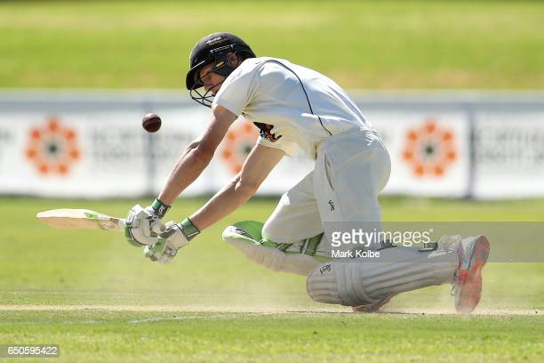 Cameron Bancroft of the Warriors falls over as he is trapped LBW by James Pattinson of the Bushrangers during the Sheffield Shield match between...