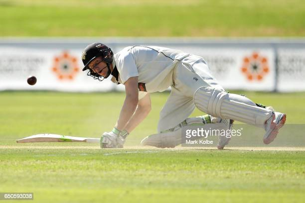 Cameron Bancroft of the Warriors looks up after falling as he was trapped LBW by James Pattinson of the Bushrangers during the Sheffield Shield match...