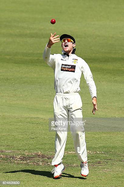 Cameron Bancroft of Western Australia celebrates taking a catch to dismiss Ben Dunk of Tasmania during day four of the Sheffield Shield match between...