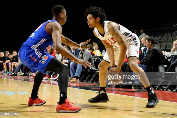 Cameron Payne of the Windy City Bulls control the ball against the Westchester Knicks on March 21 2017 at the Sears Centre Arena in Hoffman Estates...