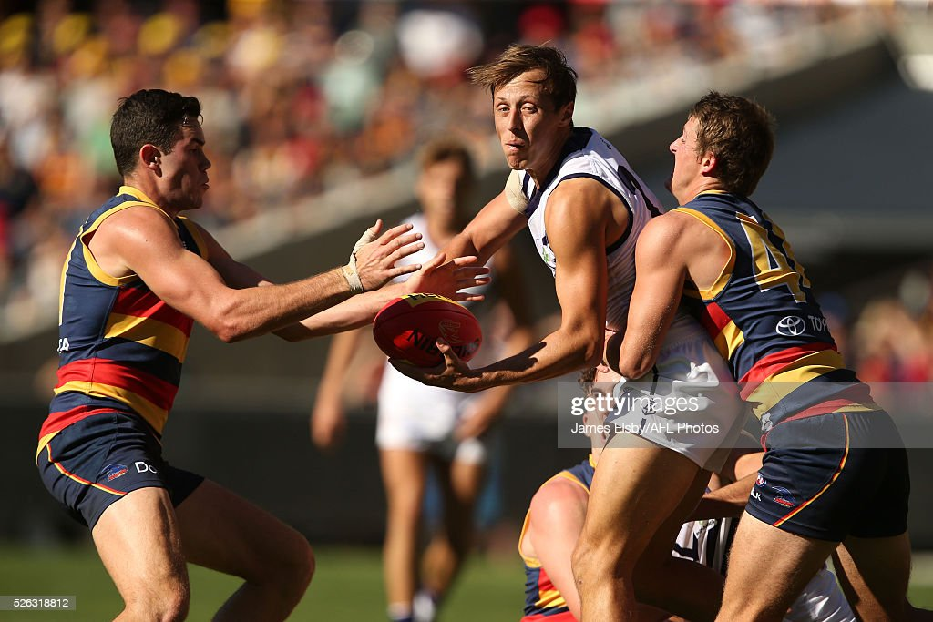 Cameron Sutcliffe of the Dockers is tackled by Paul Seedsmanand Matt Crouch of the Crows during the 2016 AFL Round 06 match between the Adelaide Crows and the Fremantle Dockers at Adelaide Oval, Adelaide on April 30, 2016.