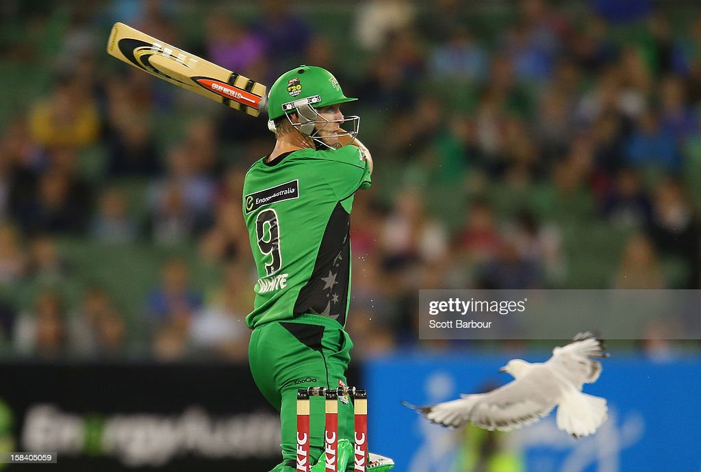 <a gi-track='captionPersonalityLinkClicked' href=/galleries/search?phrase=Cameron+White&family=editorial&specificpeople=178931 ng-click='$event.stopPropagation()'>Cameron White</a> of the Stars bats during the Big Bash League match between the Melbourne Stars and the Hobart Hurricanes at the Melbourne Cricket Ground on December 15, 2012 in Melbourne, Australia.