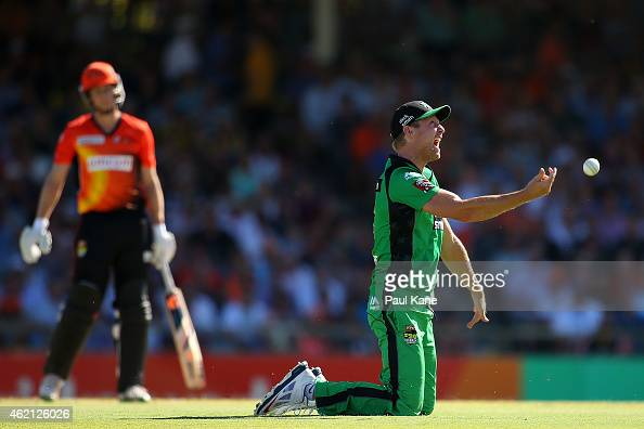 Cameron White of the Stars celebrates after taking a catch to dismiss Adam Voges of the Scorchers during the Big Bash League Semi Final match between...