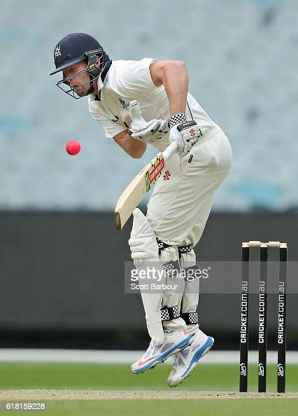 Cameron White of Victoria is struck in the chest by a delivery bowled by Jackson Bird of Tasmania during day two of the Sheffield Shield match...