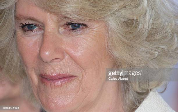 Camila Duchess of Cornwall visits the Guide Dogs Center at the ONCE Foundation on day two of a three day visit to Spain on March 31 2011 in Madrid...