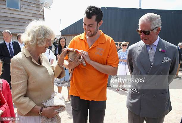 Camilla Duchess of Cornwall and Prince Charles Prince of Wales are shown a piglet as they visit Humble by Nature Farm on July 9 2015 in Monmouth...