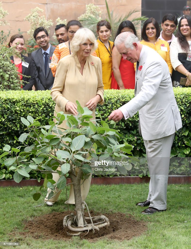 Camilla, Duchess of Cornwall and Prince Charles, Prince of Wales plant a banyan tree to commemorate the British Council's 70 year presence in India as they attend a celebration of the UK-India Year of Culture hosted at the British Council during a visit to India on November 8, 2017 in New Delhi, India. The Prince of Wales and Duchess of Cornwall are on a tour of Singapore, Malaysia, Brunei and India.