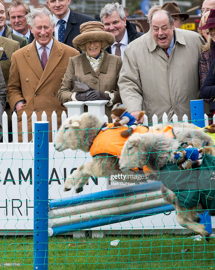 Camilla, Duchess of Cornwall (C) and Prince Charles, Prince of Wales with Nicholas Soames (R) watch sheep racing during The Prince's Countryside Fund Raceday at Ascot Racecourse on March 29, 2015 in Ascot, England.