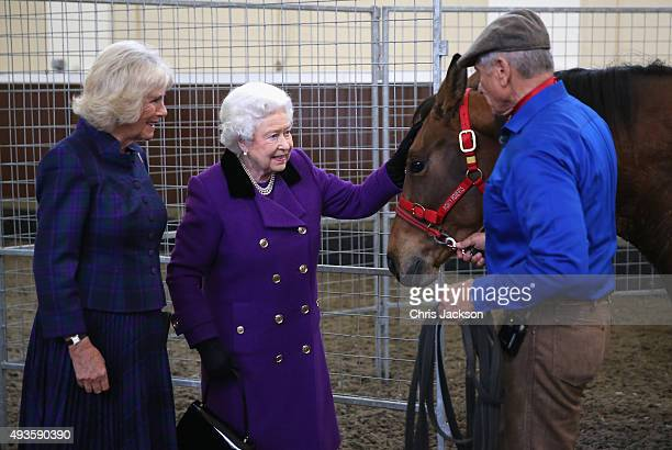 Camilla Duchess of Cornwall and Queen Elizabeth II attend a horse whispering demonstation by Brooke Global Ambassador Monty Roberts at the Royal Mews...