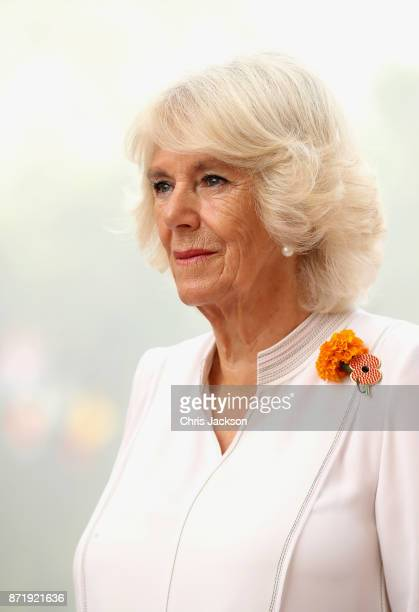 Camilla Duchess of Cornwall at India Gate during a visit to India on November 9 2017 in New Delhi India The Prince of Wales and Duchess of Cornwall...