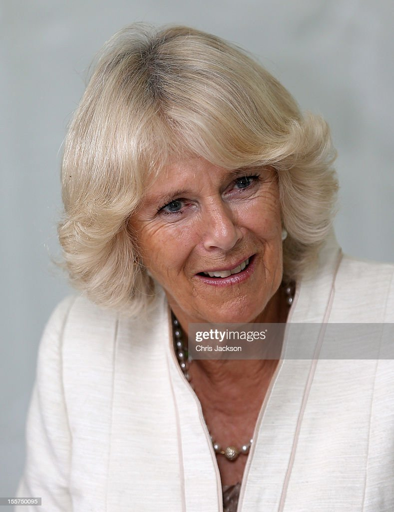 Camilla, Duchess of Cornwall attends a reception for rural women on November 8, 2012 in Richmond, Australia. The Royal couple are in Australia on the second leg of a Diamond Jubilee Tour taking in Papua New Guinea, Australia and New Zealand.