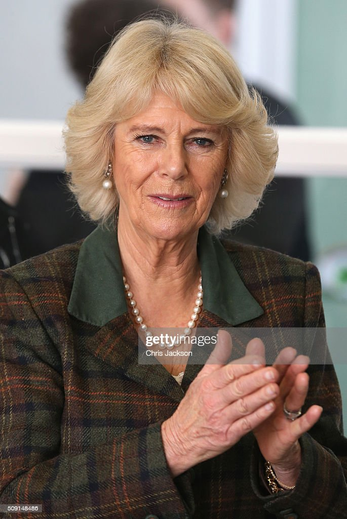 <a gi-track='captionPersonalityLinkClicked' href=/galleries/search?phrase=Camilla+-+Duchess+of+Cornwall&family=editorial&specificpeople=158157 ng-click='$event.stopPropagation()'>Camilla</a>, Duchess of Cornwall attends lessons as she visits Forest and Sandridge Church of England Primary School during an away day to Wiltshire on February 9, 2016 in Melksham, England. The Duchess officially opened the new school building during her visit.