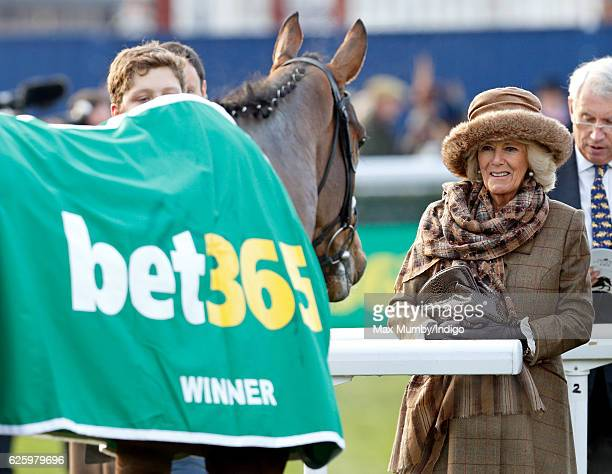 Camilla Duchess of Cornwall attends the 60th Hennessy Gold Cup at Newbury Racecourse on November 26 2016 in Newbury England