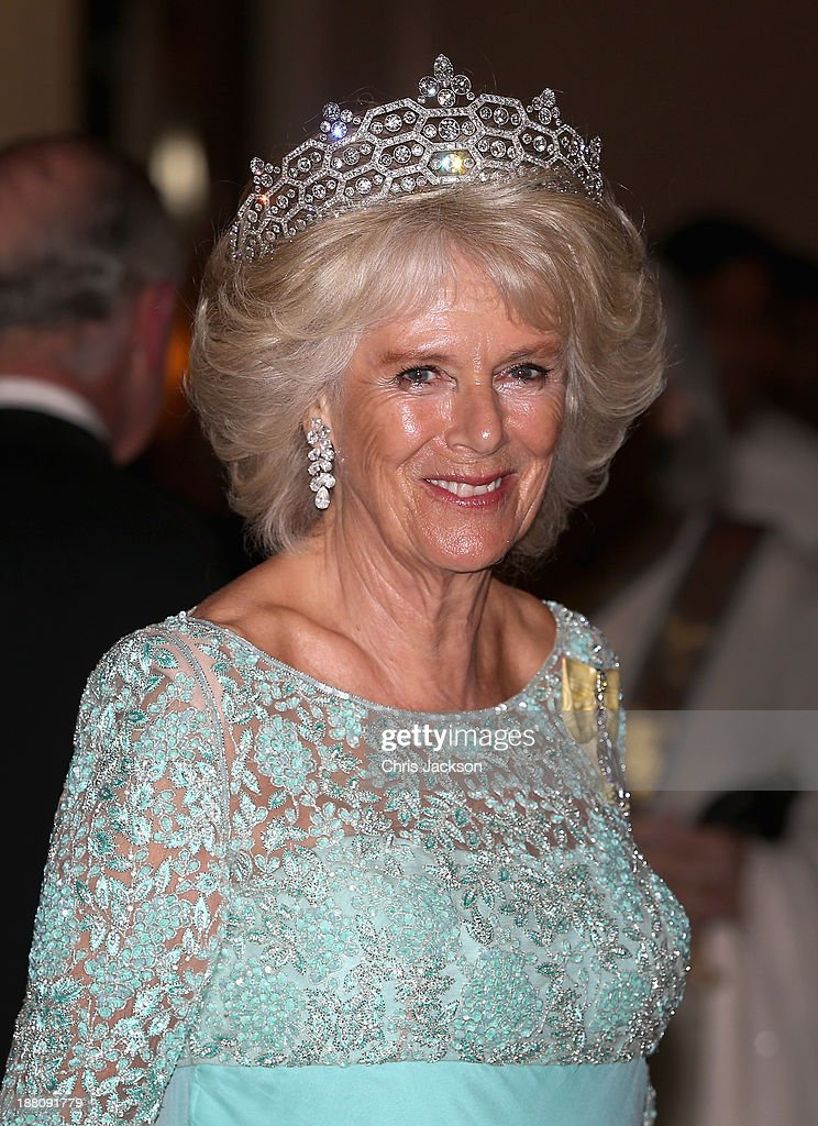 <a gi-track='captionPersonalityLinkClicked' href=/galleries/search?phrase=Camilla+-+Duchess+of+Cornwall&family=editorial&specificpeople=158157 ng-click='$event.stopPropagation()'>Camilla</a>, Duchess of Cornwall attends the CHOGM Dinner at the Cinnamon Lakeside Hotel during the Commonwealth Heads of Government 2013 Opening Ceremony at the Lotus Theatre on November 15, 2013 in Colombo, Sri Lanka. The Royal couple are visiting Sri Lanka in order to attend the 2013 Commonwealth Heads of Government Meeting.Prince Charles, representing the Queen will open the meeting.