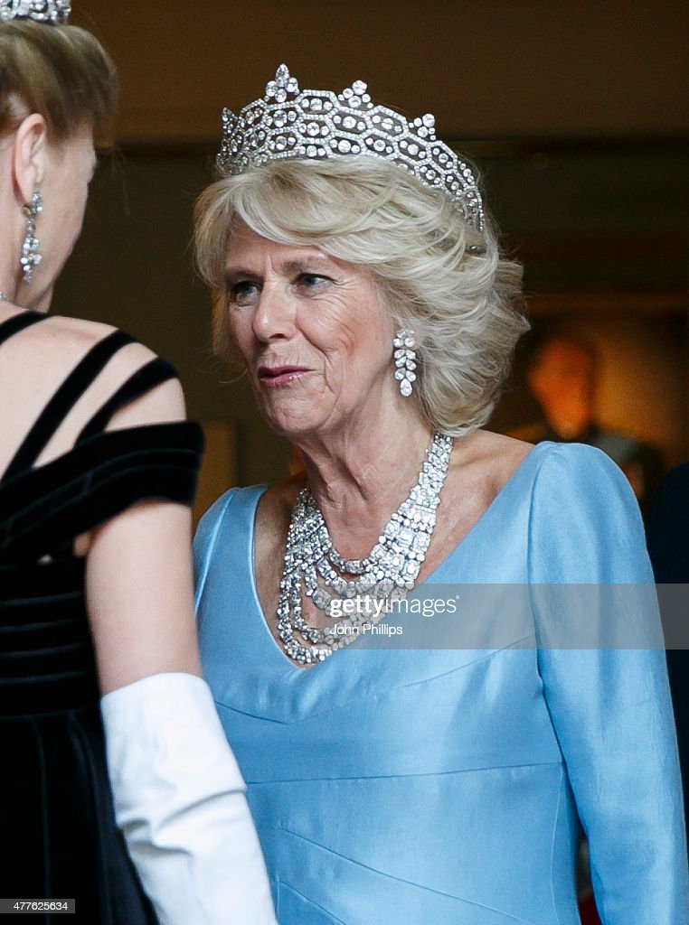 Camilla, Duchess Of Cornwall attends The Duke of Wellington's Waterloo banquet at Apsley House on June 18, 2015 in London, England.