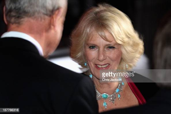Camilla Duchess of Cornwall attends the Sun Military Awards at the Imperial War Museum on December 6 2012 in London England
