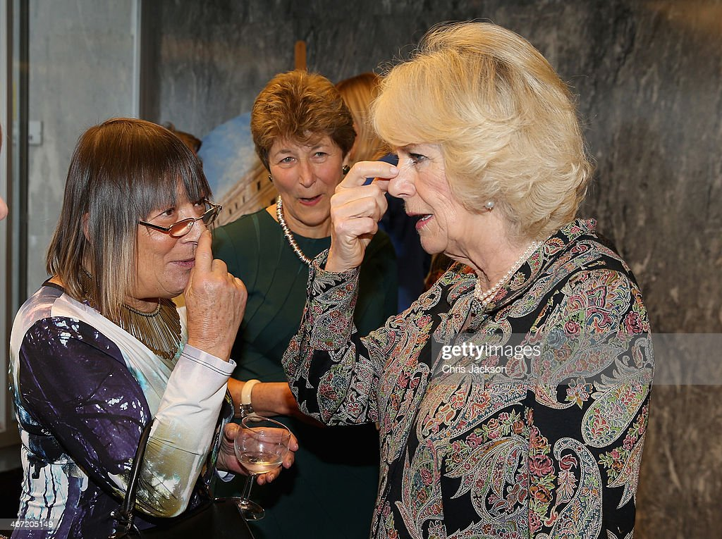<a gi-track='captionPersonalityLinkClicked' href=/galleries/search?phrase=Camilla+-+Duchess+of+Cornwall&family=editorial&specificpeople=158157 ng-click='$event.stopPropagation()'>Camilla</a>, Duchess of Cornwall chats with <a gi-track='captionPersonalityLinkClicked' href=/galleries/search?phrase=Hilary+Alexander&family=editorial&specificpeople=220588 ng-click='$event.stopPropagation()'>Hilary Alexander</a> of the 'Telegraph' Newspaper as they celebrate success of New Zealand women in the UK on Waitangi day at New Zealand House on February 6, 2014 in London, England. Waitangi Day commemorates the signing of a treaty between 500 Maori Chiefs and the British Crown in 1840.
