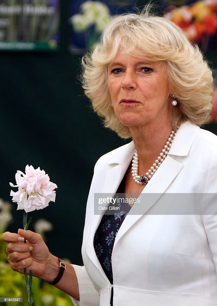 Camilla, Duchess of Cornwall holds a Malmaison carnation (now usually known as 'Old Blush') she received during her visit to the Plant Heritage Marquee at Hampton Court Palace Flower Show on July 7, 2008 in London, England. The annual Hampton Court Palace Flower Show will run from July 8 to July 13, 2008.