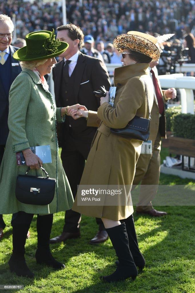 camilla-duchess-of-cornwall-honorary-member-of-the-jockey-club-speaks-picture-id653538762