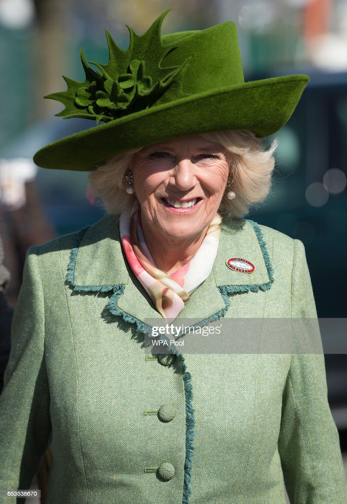Camilla, Duchess of Cornwall, Honorary Member of the Jockey Club, attends the second day of The Festival, Ladies Day, at Cheltenham Racecourse on March 15, 2017 in Cheltenham, England.