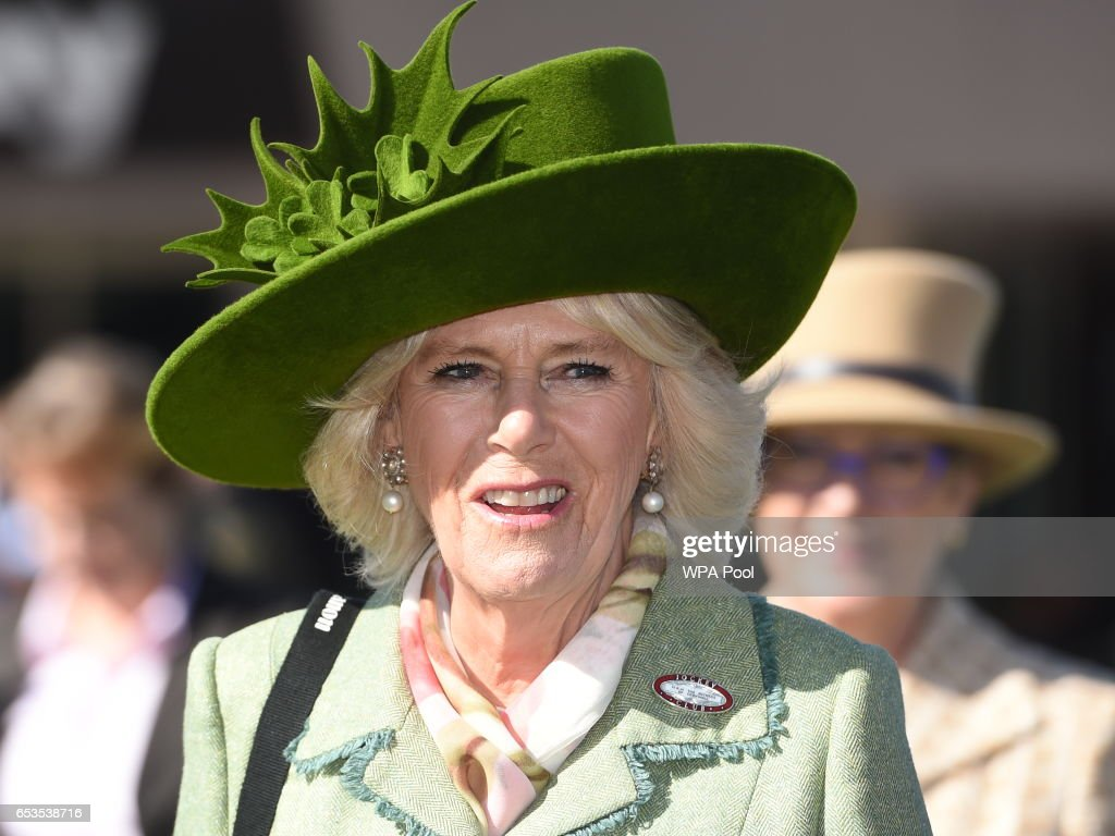 camilla-duchess-of-cornwall-honorary-member-of-the-jockey-club-the-picture-id653538716