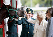 Camilla Duchess of Cornwall meets horses as she visits Escuela de Cabelleria del Ejercito on October 30 2014 in Bogota Colombia The Royal Couple are...