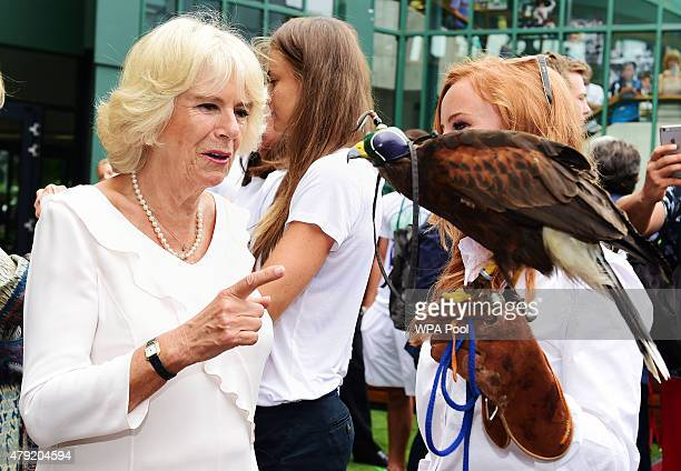 Camilla Duchess of Cornwall meets Imogen Davis and hawk Rufus during day four of the Wimbledon Lawn Tennis Championships at the All England Lawn...