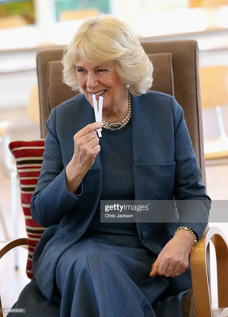 <a gi-track='captionPersonalityLinkClicked' href=/galleries/search?phrase=Camilla+-+Duchess+of+Cornwall&family=editorial&specificpeople=158157 ng-click='$event.stopPropagation()'>Camilla</a>, Duchess of Cornwall, Patron of Royal Trinity Hospice, takes part in an aromatherapy hand-massage session as she visits Royal Trinity Hospice at Royal Trinity Hospice on February 10, 2016 in London, England. The Duchess was visiting to mark the beginning of the 125th Anniversary and met staff, volunteers, patients and their families.