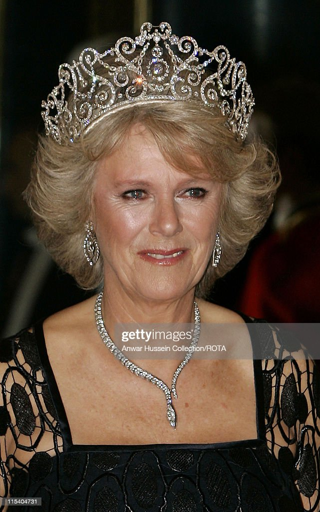 Camilla, Duchess of Cornwall poses before the banquet for the Norwegian Royal Family at Buckingham Palace on October 25, 2005 in London, England. The visit is to mark 100 years of Norway's independence from Sweden.