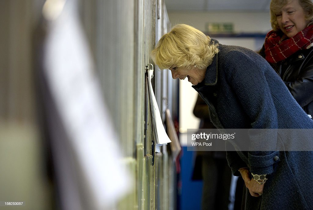 Camilla, Duchess of Cornwall reacts as she looks into a dog kennel during a visit to Battersea Dog and Cats Home on December 12, 2012 in London, England. The Duchess of Cornwall as patron of Battersea Dog and Cats home visited with her two Jack Russell terriers Beth, a 3 month old who came to Battersea as an unwanted puppy in July 2011 and Bluebell a nine week old stray who was found wandering in a London Park.