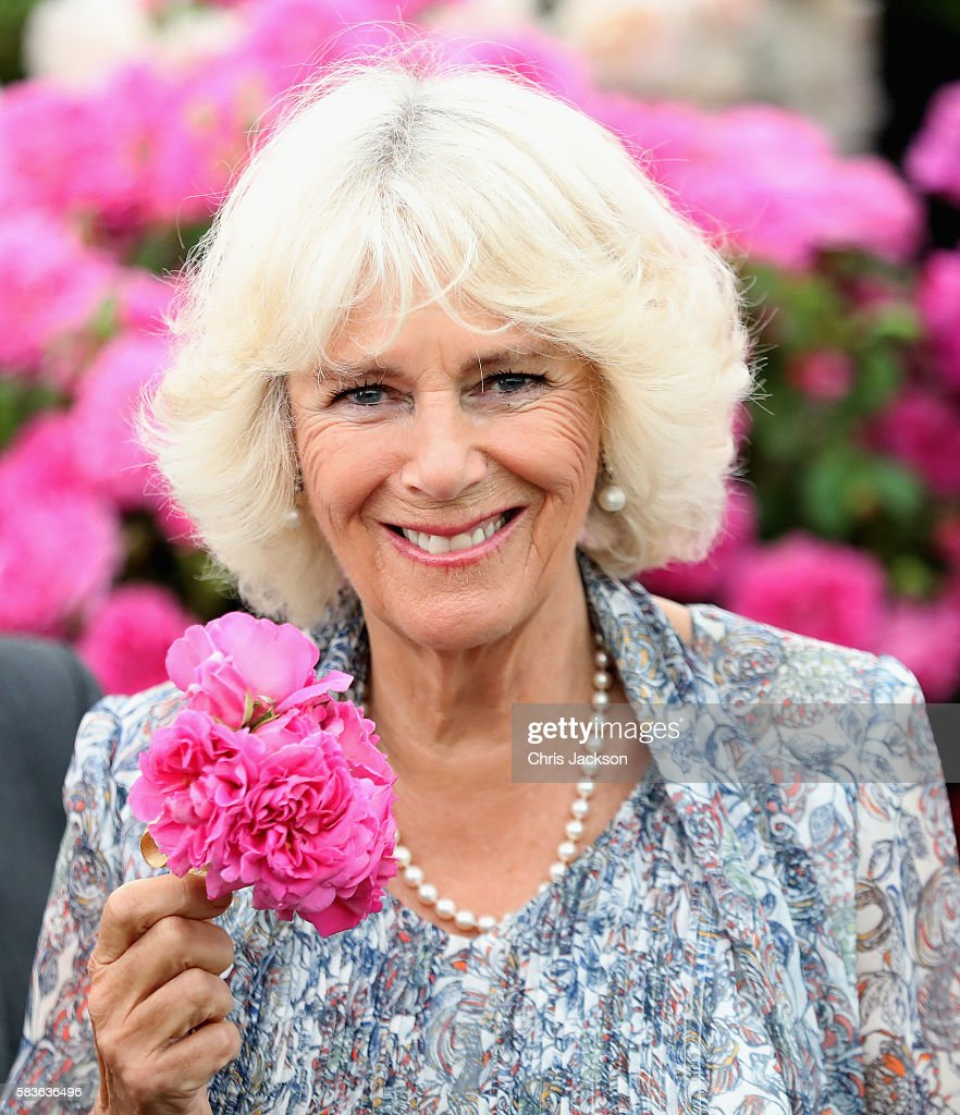 Camilla Duchess of Cornwall smells a flower as she visits Sandringham Flower Show on July 27 2016 in Sandringham England
