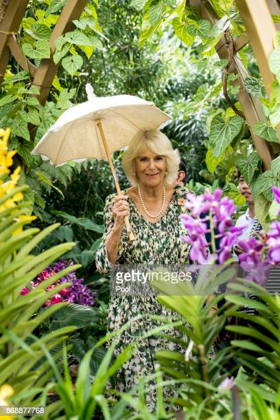 Camilla Duchess of Cornwall tours the National Botanical Gardens on November 1 2017 in Singapore Prince of Wales and Camilla Duchess of Cornwall are...