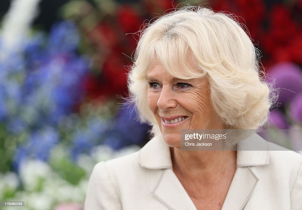 <a gi-track='captionPersonalityLinkClicked' href=/galleries/search?phrase=Camilla+-+Duchessa+di+Cornovaglia&family=editorial&specificpeople=158157 ng-click='$event.stopPropagation()'>Camilla</a>, Duchess of Cornwall visits the 132nd Sandringham Flower Show at Sandringham House on July 31, 2013 in King's Lynn, England.