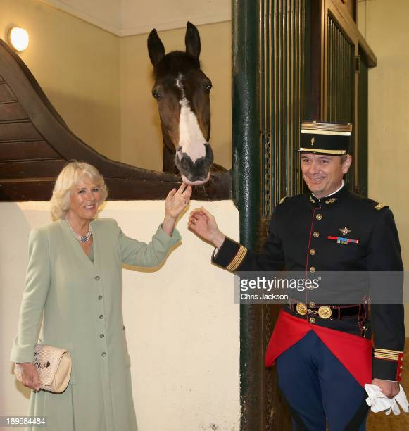 Camilla Duchess of Cornwall visits the stables at the French Republican Guard headquarters on May 28 2013 in Paris France Camilla is on her first...