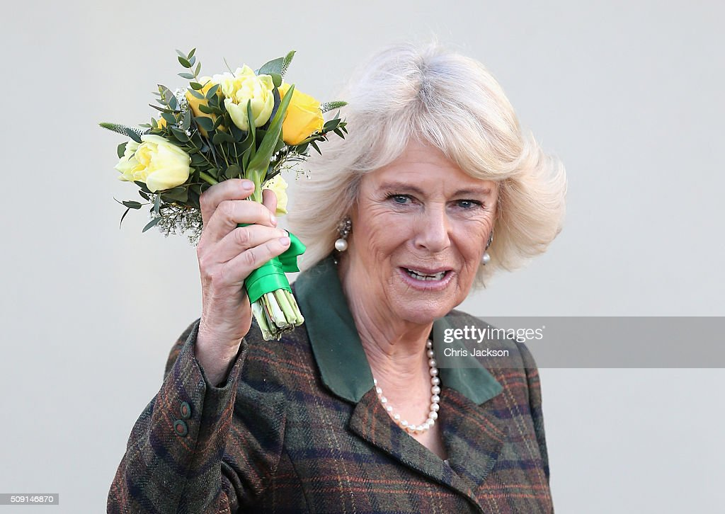<a gi-track='captionPersonalityLinkClicked' href=/galleries/search?phrase=Camilla+-+Duquesa+da+Cornualha&family=editorial&specificpeople=158157 ng-click='$event.stopPropagation()'>Camilla</a>, Duchess of Cornwall waves as she leaves Forest and Sandridge Church of England Primary School during an away day to Wiltshire on February 9, 2016 in Melksham, England. The Duchess officially opened the new school building during her visit.