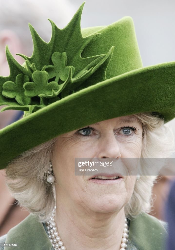 Camilla, Duchess of Cornwall wears a St Patrick's Day themed hat decorated with shamrocks, designed by Milliner Philip Treacy to the final day of Cheltenham Races on March 17, 2006 in Cheltenham, England.