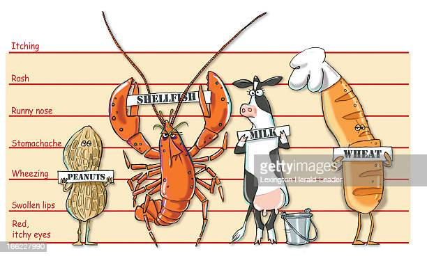 Camille Weber color illustration of food felons food allergy lineup which includes peanuts shellfish dairy and wheat can go with stories about food...