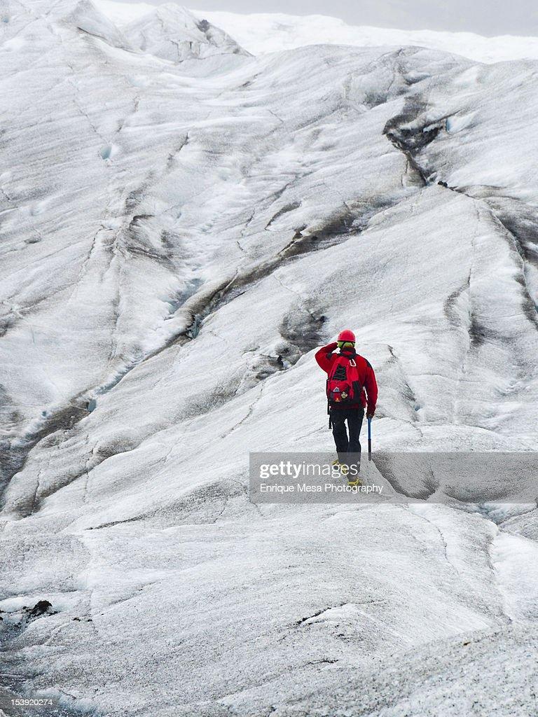 Caminando por el glaciar : Foto de stock