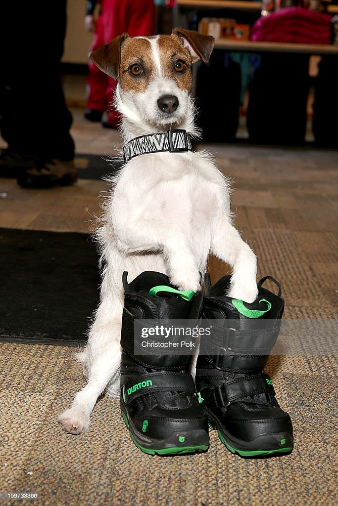 Camo attends Burton Learn To Ride on January 19, 2013 in Park City, Utah.