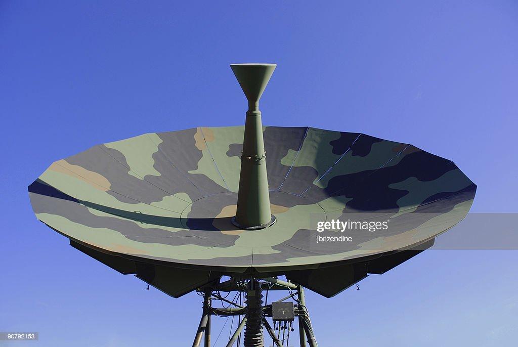 Camouflage satellite dish