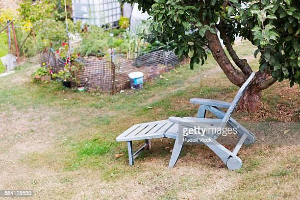 Camp (folding) bed in garden under apple tree