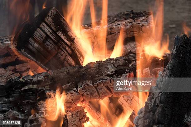 Camp fire with logs and flames