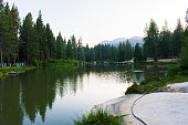 Boys Scout Camp in Sequoia national forest