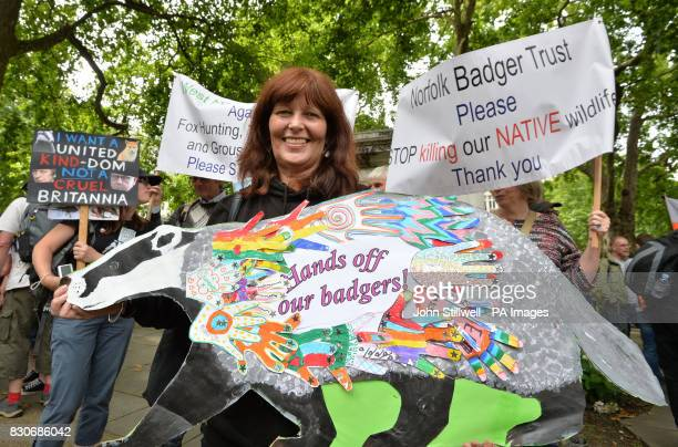 Campaigner Christine Wood with her badger poster in Cavendish Square London before a march to Downing Street in protest against badger culling fox...