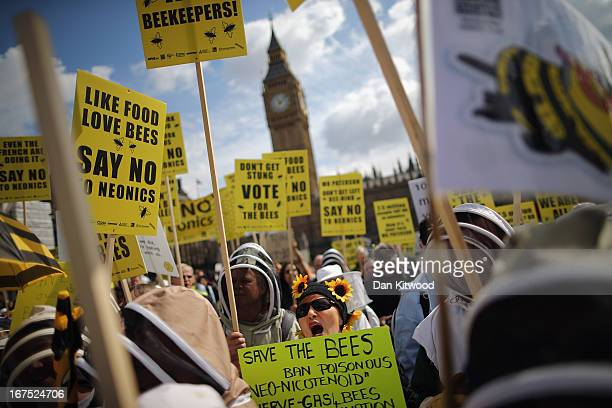 Campaigners dressed as bees and beekeepers demonstrate on Parliament Square on April 26 2013 in London England Over a hundred campaigners including...