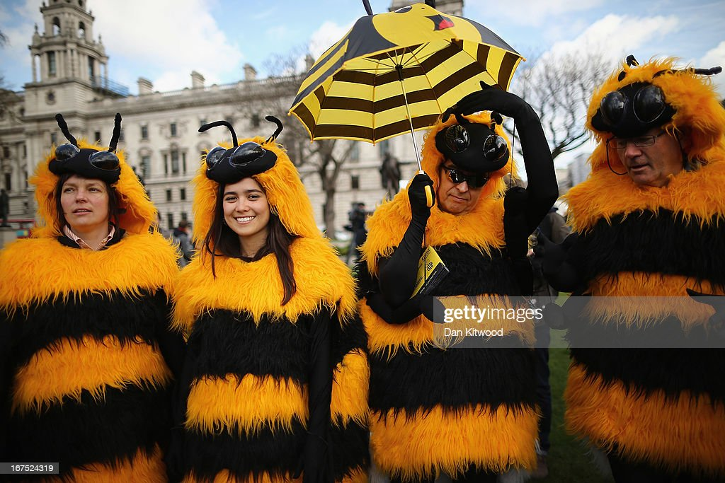 Campaigners dressed as bees gather on Parliament Square on April 26, 2013 in London, England. Over a hundred campaigners including British fashion designers Dame Vivienne Westwood and Katharine Hamnett gathered on Parliament Square, some dressed as beekeepers, to urge British Secretary of State for the Environment Food and Rural Affairs, Owen Paterson, to not block EU proposals to suspend the use of bee killing pesticides.