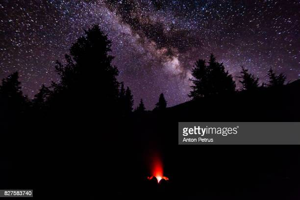 Campfire in a forest against a starry sky