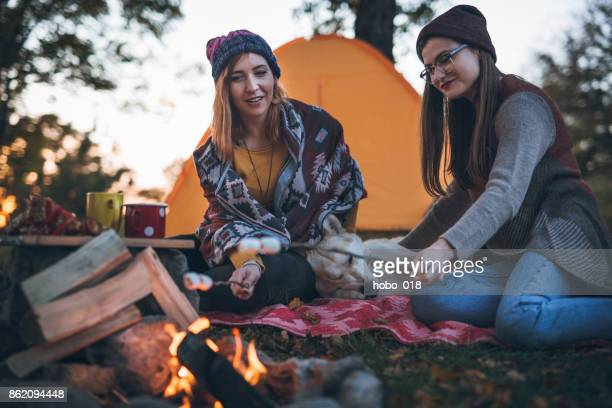 Camping and marshmallows
