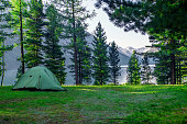 A green tent in the woods in the background a beautiful lake. Camping and tent under the pine forest