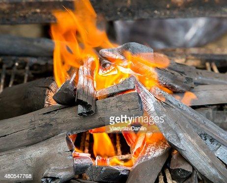 camping campfire : Stock Photo